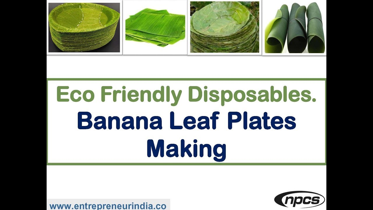 Banana Leaf Plates Making  sc 1 st  YouTube & Eco Friendly Disposables. Banana Leaf Plates Making - YouTube