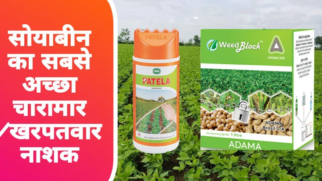 सोयाबीन की खेती के लिए सबसे अच्छा खरपतवार नाशक  soybean ki kheti