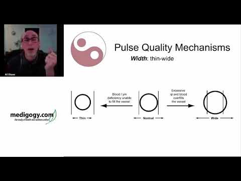 Al Stone: Pulse Diagnosis Made Ridiculously Simple thumbnail