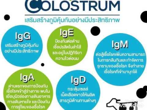 Colestrum
