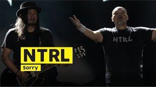 NTRL - Sorry (Live at Mandala Krida Yogyakarta)