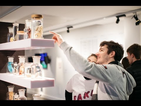 FAKE: THE REAL DEAL? at Science Gallery Dublin in 60 seconds