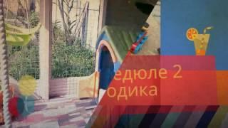 Федюле 2 года (яванская макака Федор) клип