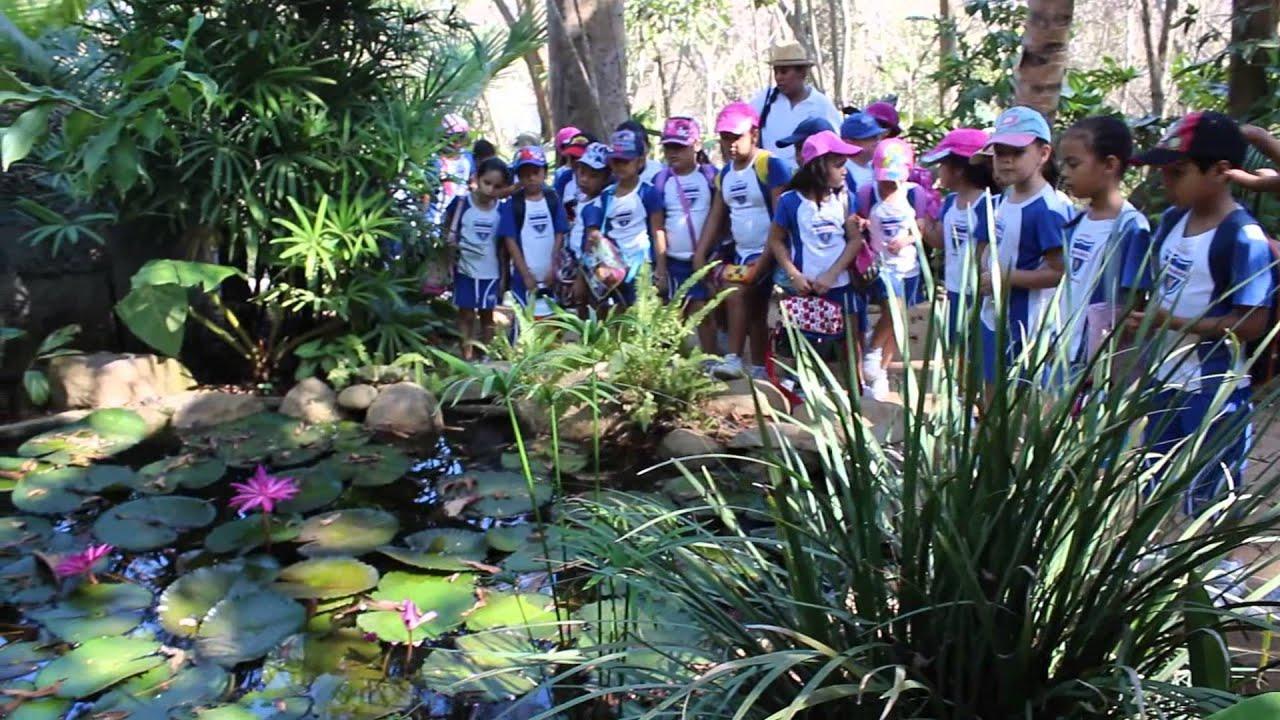 Visita al jard n bot nico de acapulco primaria colegio for Caracteristicas de un jardin botanico