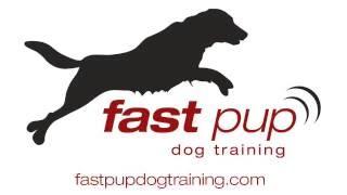 Fast Pup's Australian Kelpie Rocks