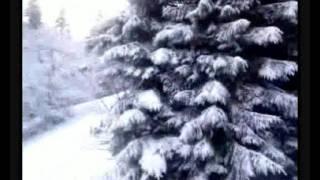В.Леонтьев - Белый снег - клип на песню.avi
