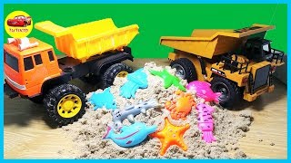Dump trucks for kids - Learn Sea Animals Names For Children New Toy Videos - Tutikid