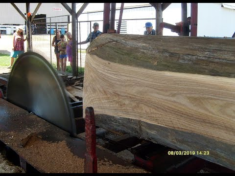 Sawing Up A Big Red Elm On An 1880s Steam Powered Circular Sawmill At 50th Annual Threshing Show