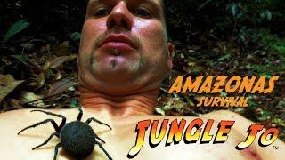 Eine Reise durch den Regenwald | Jungle Jo