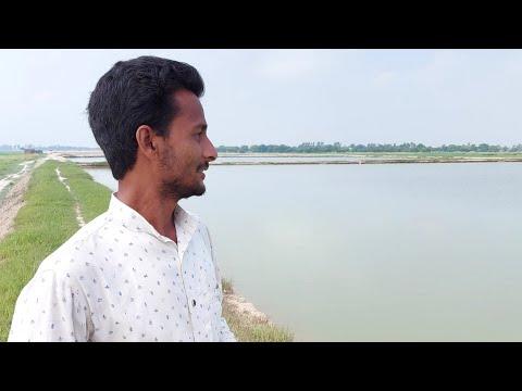 Fish Farming#Fisheries#Fish#Farming#Pond#Fish#Tank