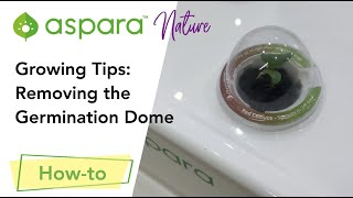 Growing Tips: Removing the germination dome