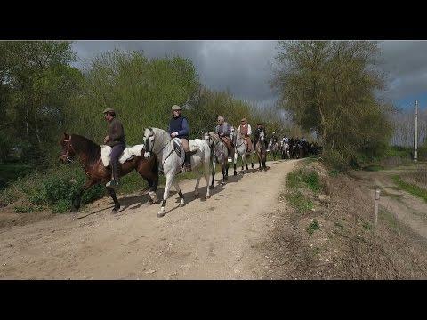 Passeio a Cavalo- Salvaterra de Magos 2017