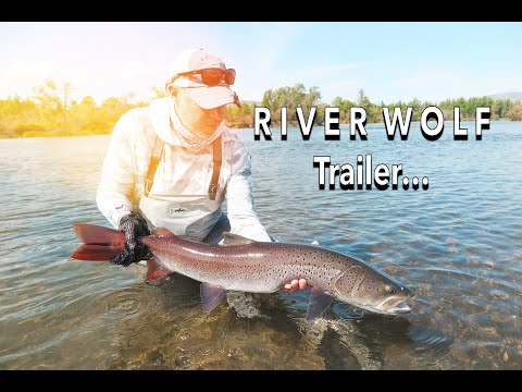 Mongolia Taimen RIVER WOLF Trout Fly Fishing TRAILER