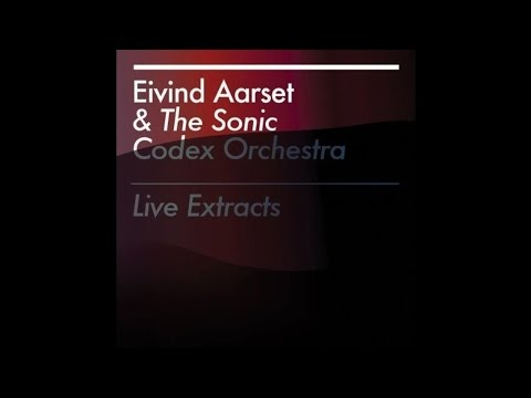 Eivind Aarset & The Sonic Codex Orchestra - Bla Meis
