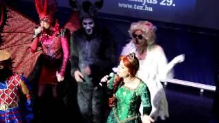 Shrek a Musical szereplők jelmezben
