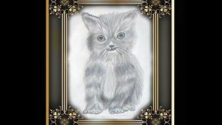 Как нарисовать кошку (котенка) карандашом  поэтапно
