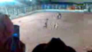 Rodeio 8 segundos - Touro Bandido