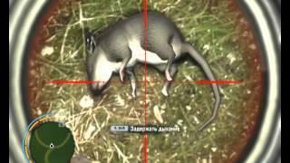 Far Cry Hunting Li Lizards And Rats