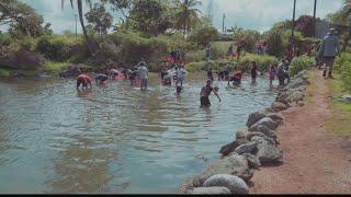 Mālama Loko Ea gala fundraiser coming to Puaʻena Beach