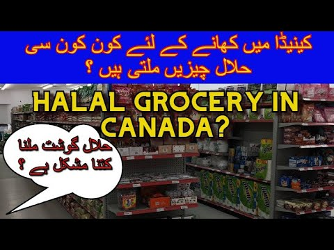 stores kitchener waterloo ontario halal grocery store in canada kitchener waterloo halal