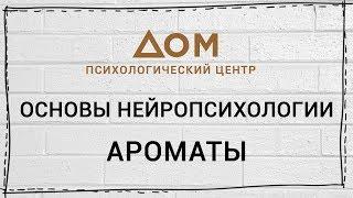 Основы нейропсихологии / Шишкова Светлана Юлиановна
