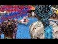 Вьетнам 2018   Dessole Sea Lion Mui Ne   Игры в бассейне