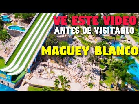 Maguey Blanco balneario Hidalgo | Todo lo que tienes que saber