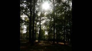 Alan Stivell-Parlament Lament (audio)