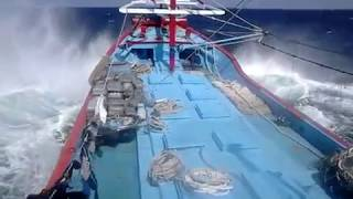 Gambar cover Kapal Juwana KM Berkah Samudra vs Samudra Hindia