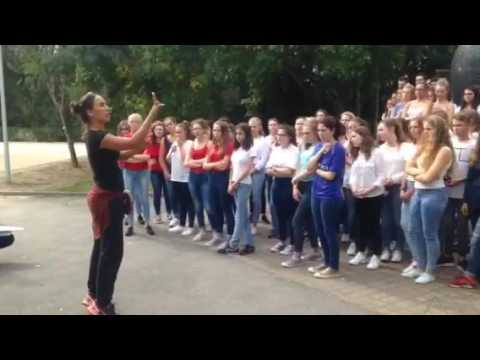 Flashmob 2016 Truffaut Challans