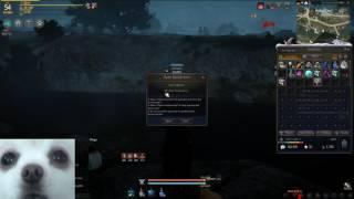 Black Desert Online- Opening some Lavientia boxes