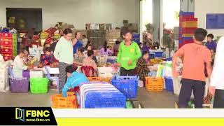 Bình Thuận : Thanh Long đột ngột tăng giá dịp trung thu | FBNC
