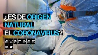 Estudio Sugiere Que El Coronavirus No Fue Creado En Un Laboratorio