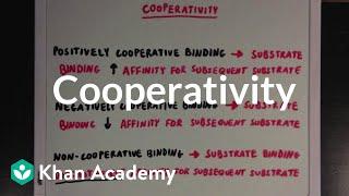 Cooperativity | Biomolecules | MCAT | Khan Academy