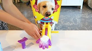 PUPPY vs PIE FACE GAME Super Cooper Sunday 107