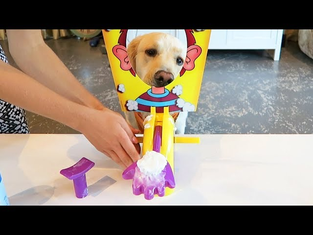 PUPPY vs PIE FACE GAME (Super Cooper Sunday #107)
