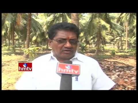 Special Focus On Awareness Programs Over Natural Farming and Cocoa Cultivation | Nela Talli | HMTV