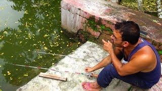 Live Fishing Video | सर्वश्रेष्ठ मछली पकड़ने का वीडियो (Part-86)