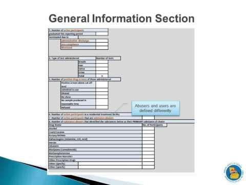 FY2014 Accountability Court Quarterly Report Webinar