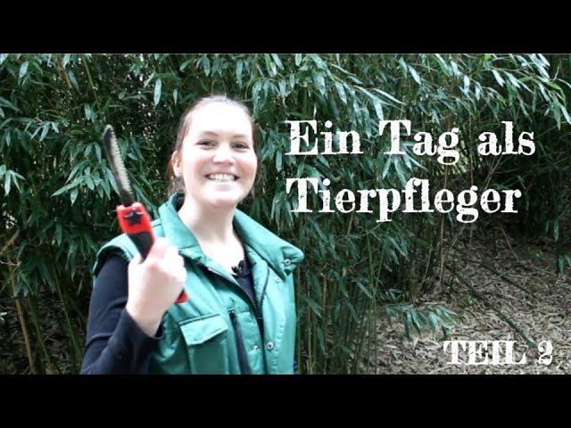 Ein Tag als Tierpfleger im Zoo Osnabrück - TEIL 2 - Svenja auf Mission