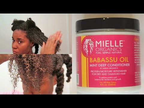 Mielle Organics Babassu Oil Mint Deep Conditioner Review | KINKY HAIR