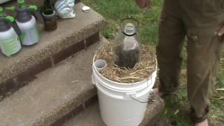 Phil's Gardening Tips And Tricks Planting The Wicking Bucket Spring 2016