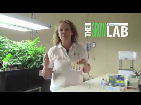 Aquaponics System Water Testing Part 1 –  pH Overview
