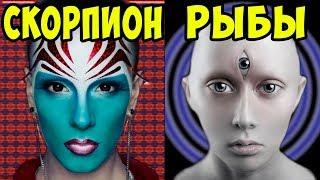 видео Знаки зодиака, обладающие невероятной интуицией