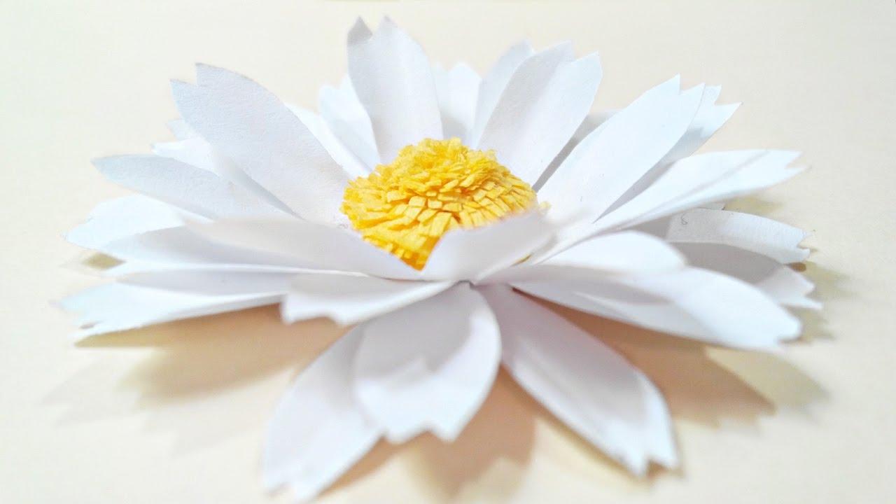 Chamomile Daisy Paper Flower Diy Tutorialper Flowers Easy For