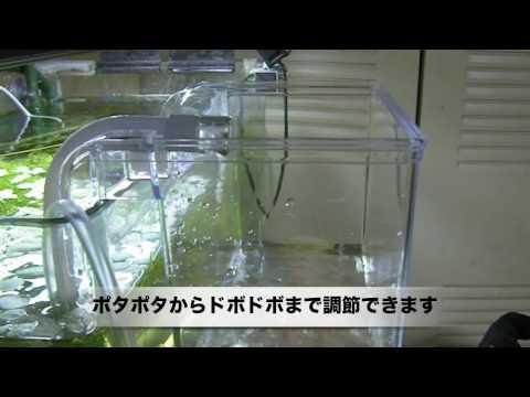 魚樂世界水族專賣店# S-5835 日本 SUDO S 氣動外掛式繁殖隔離盒0.7L 水晶蝦 孔雀魚飼育必備商品