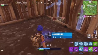 Fortnite PS4 Game Play