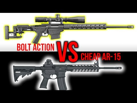 Expensive Bolt Action vs. Cheap AR-15