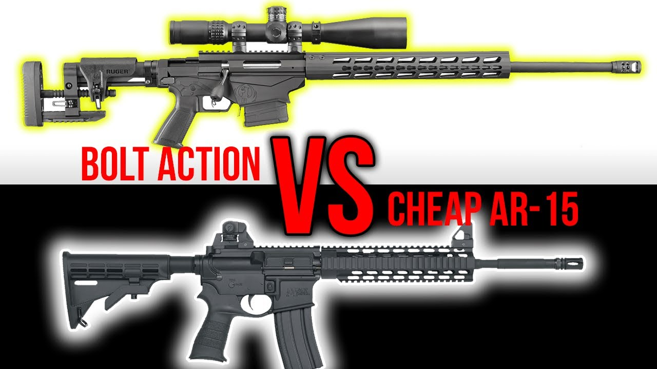 Expensive Bolt Action vs  Cheap AR-15