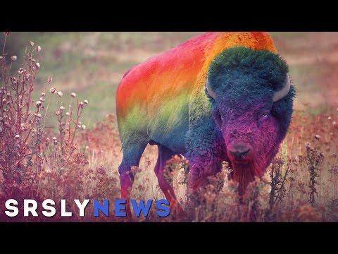 1st time gay sex: 10 things you shouldn't doиз YouTube · Длительность: 3 мин33 с